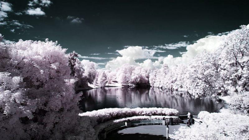 摄影技巧:红外摄影下的绿色变成了雪景