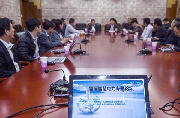 """首届""""中国智慧电力发展系列论坛""""在京举办"""