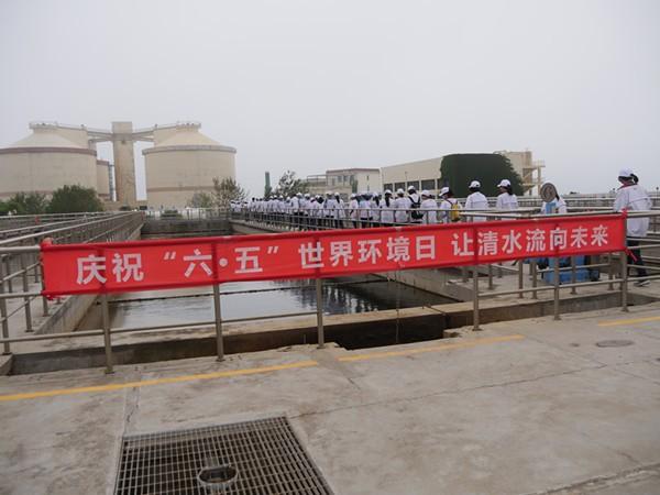 """彩立方平台官网水务环境团岛污水处理厂与17中师生开展""""让清水流向未来""""环保彩绘活动"""