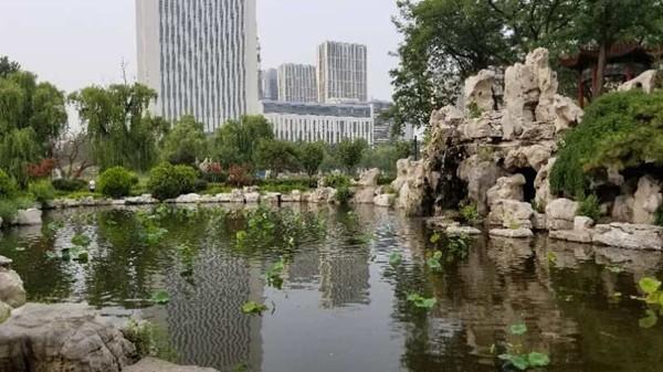 """即墨墨河公园叫停游船收费水上项目精心打造""""月色荷塘""""新景观"""