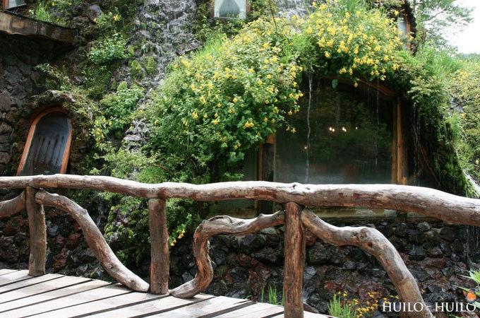 神奇的魔法木制酒店,童话森林里的城堡--置顶表情