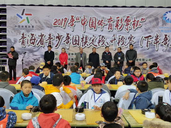 2019年青海省青少年围棋定段升段赛拉开战幕